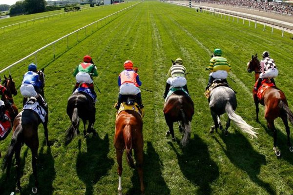 Backing Horse Racing Outsiders