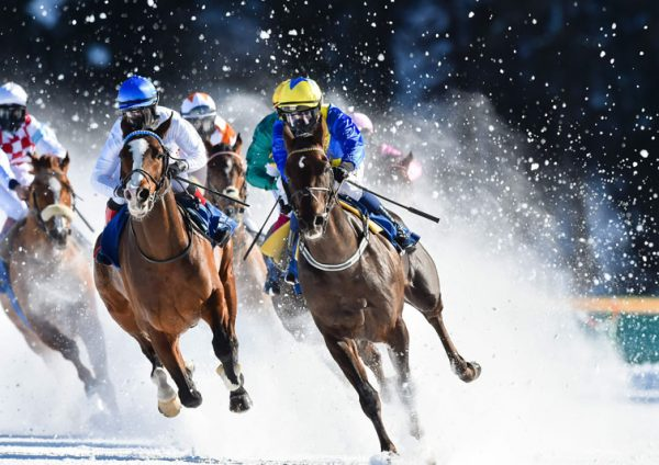 Five Considerations before Placing a Bet on Flat Racing
