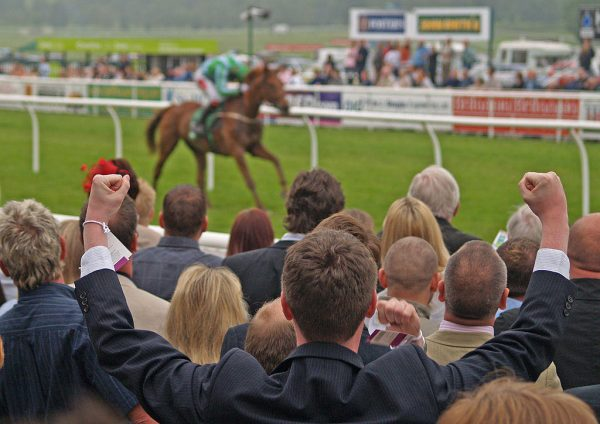 How to Take Your Horse Racing Betting to the Next Level