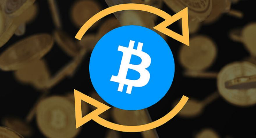 cryptocurrency best bets