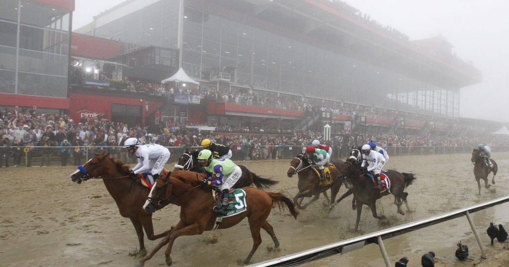 horse racing strategies underdog betting theory
