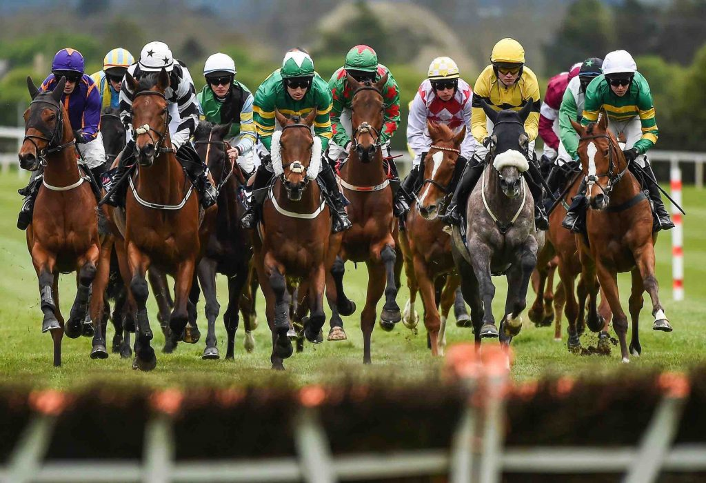 best horse race betting strategy