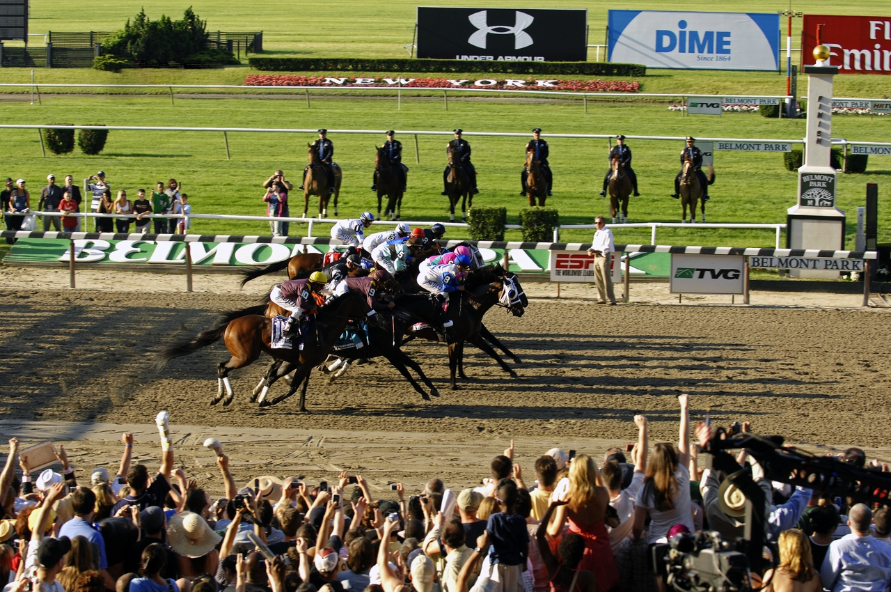 what does show mean in horse racing