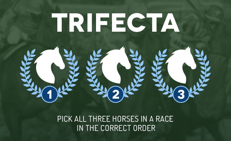 how much is a trifecta box