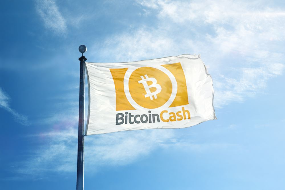 bitcoin cash to eur