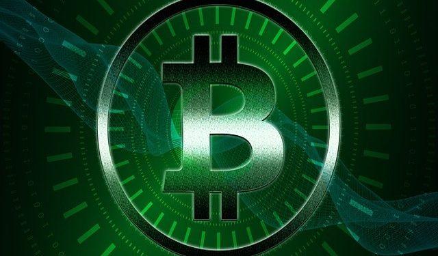 bitcoin cash bet sports betting sportsbook