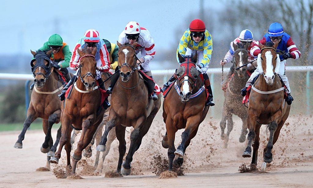 back a horse each way bet betting