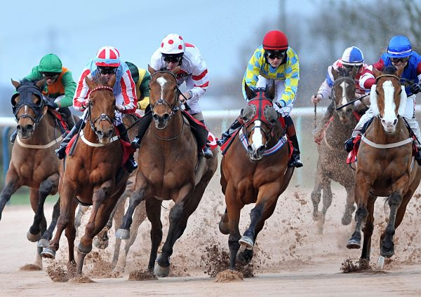 horse racing betting betting offers