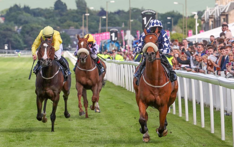 horse racing best odds guaranteed free bet