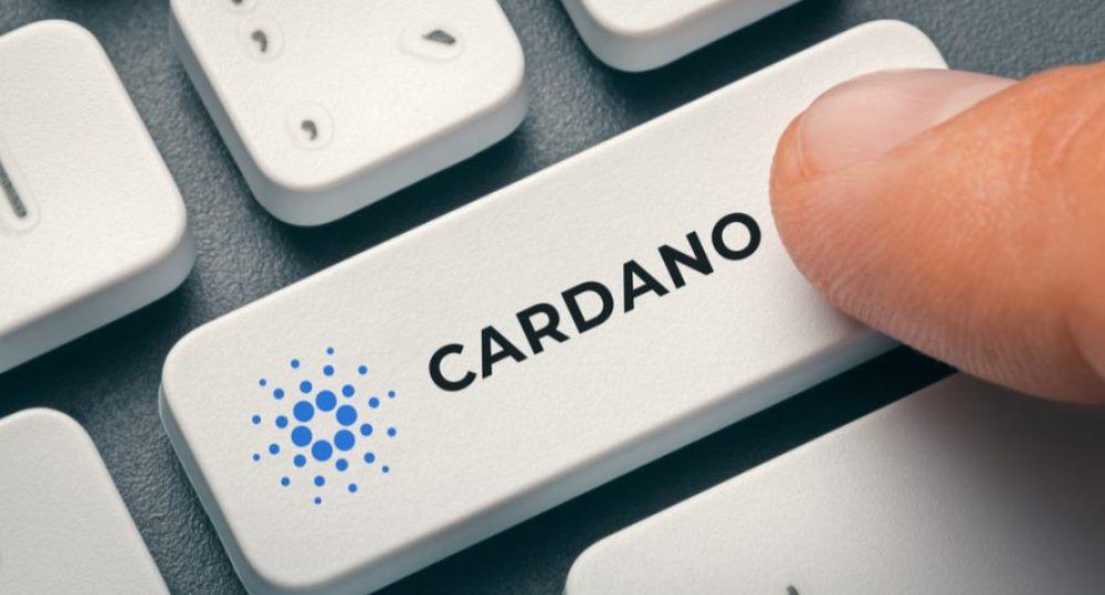 cardano coin price pros and cons
