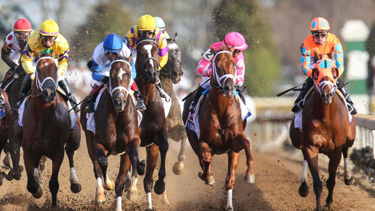 arti sp tentang peluang dalam pacuan kuda