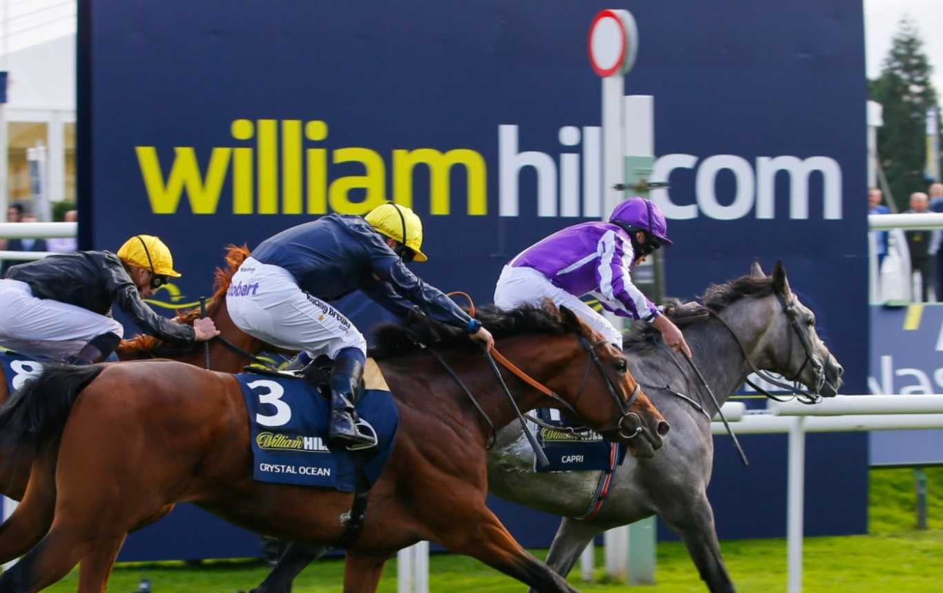 william hill free tv horse racing betting