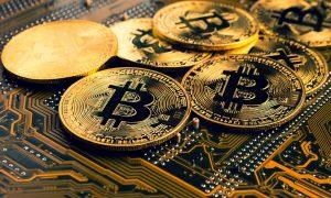 bookmaker bitcoin crypto masternode gambling site script